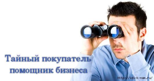 где заработать студенту, как заработать студенту, где заработать пенсионеру. как заработать пенсионеру, где можно заработать в декрете. как можно заработать в декрете,  Тендеры в Нижнем Новгороде и области, тайный покупатель, как стать тайным покупателем, что нужно что бы стать тайным покупателем, что делает тайный покупатель, Хьюго Пьюго рукоделие, /4682845_tajnyjpokupatel (530x280, 70Kb)