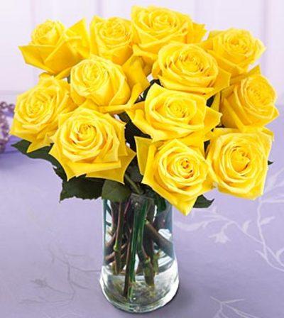 Желтые розы значение этого цвета