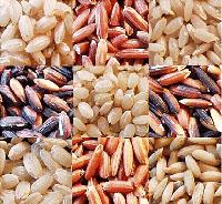 http://img0.liveinternet.ru/images/attach/c/0//42/519/42519873_rice.jpg