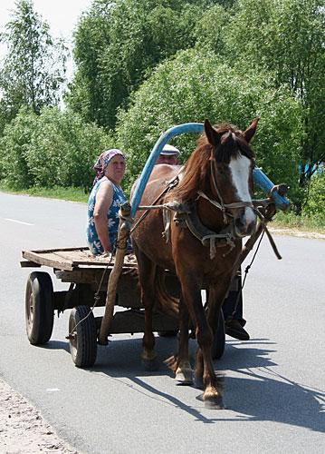 лошадь телега