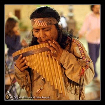 پن فلوت - pan flute