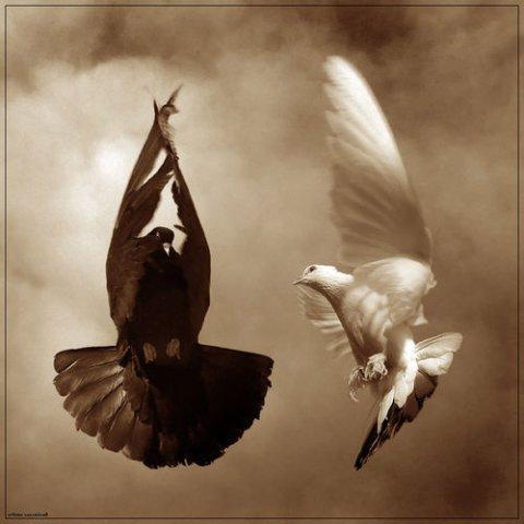 http://img0.liveinternet.ru/images/attach/c/0//44/678/44678100_Angel_i_Demon.jpg