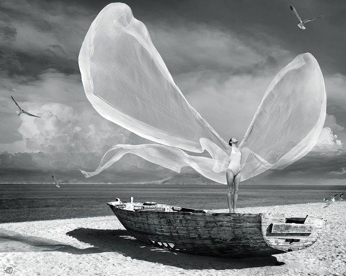 поймать ветер, автор: StanOd