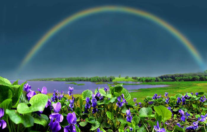 http://img0.liveinternet.ru/images/attach/c/0//44/852/44852913_269.jpg