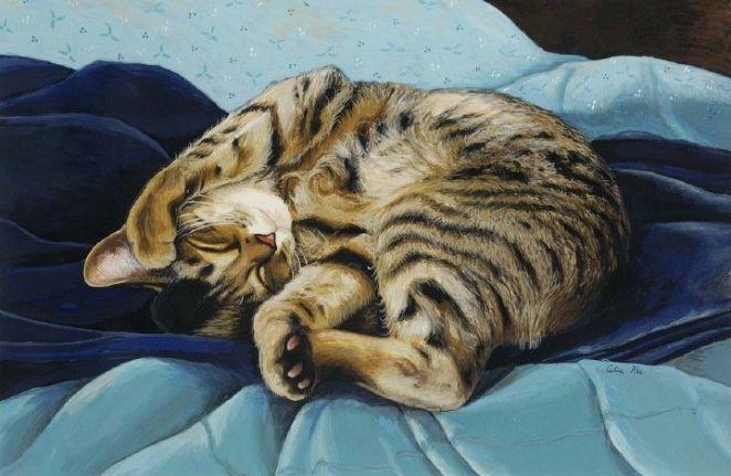 Celia Pike кошки