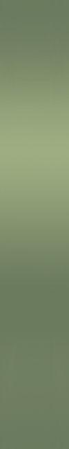 Безимени-1 (100x650, 10Kb)