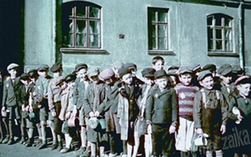 Используя показания пострадавших и очевидцев, в книге дается подробный отчет о нацистском геноциде