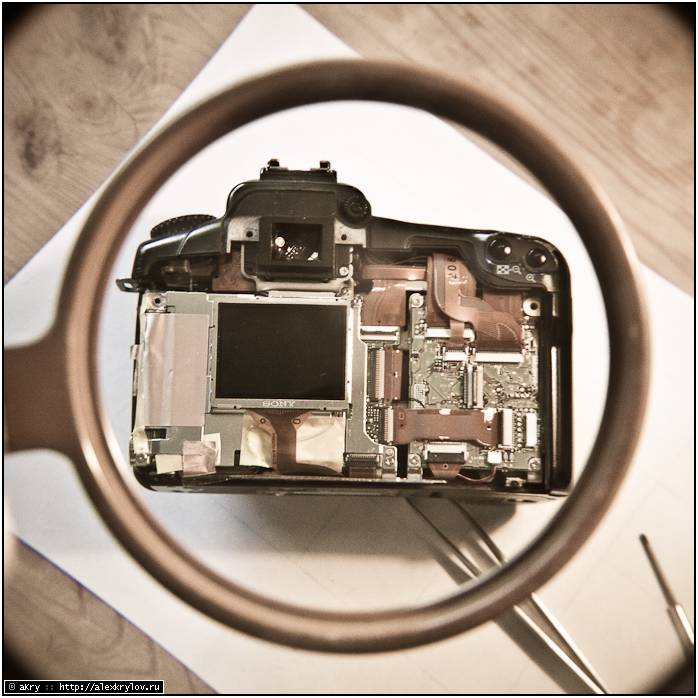 Canon 20D со снятой крышкой