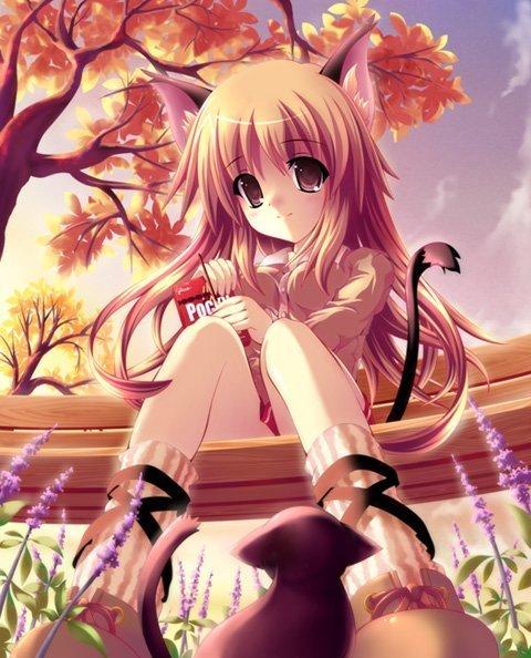 смотреть картинки аниме девушек: