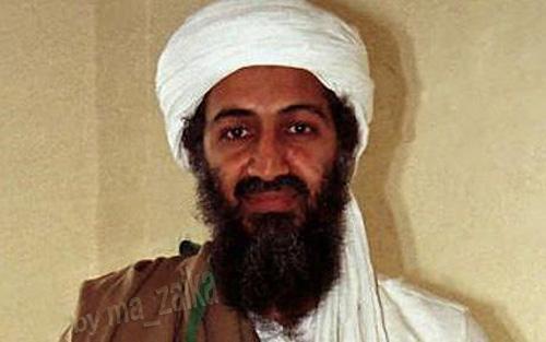 Сын Усама бен Ладена убит беспилотником США