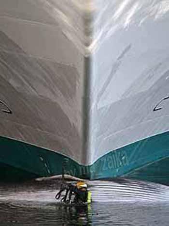 Дайвер у корпуса судна и кита
