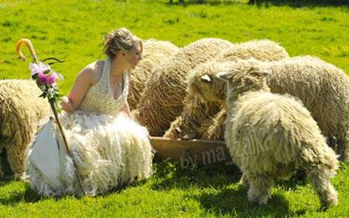 Луиза Fairburn с любимыми овцами в шерстяном платье невесты