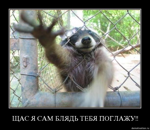 http://img0.liveinternet.ru/images/attach/c/0//47/365/47365121_tqfkta3ehjol.jpg