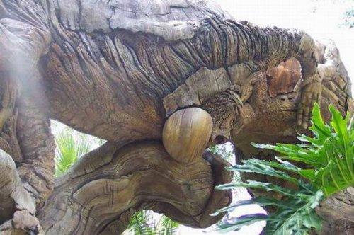 Узоры по дереву