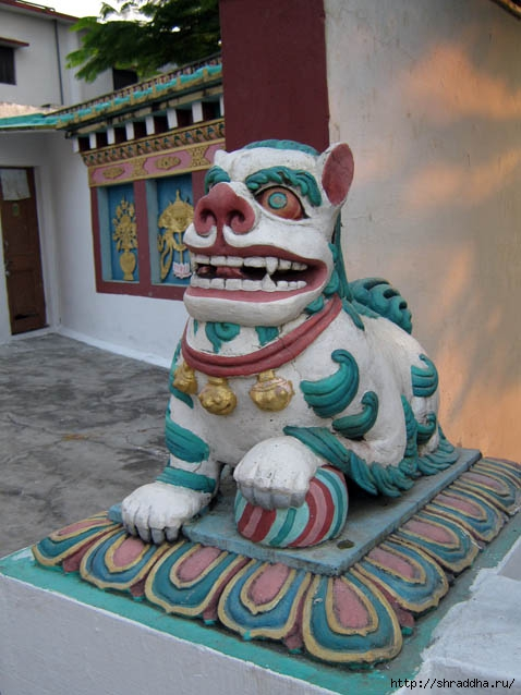 Буддийский храм. Dehradum
