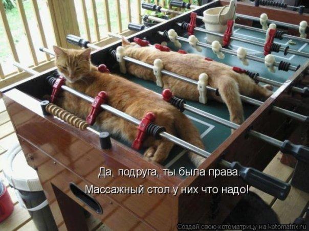http://img0.liveinternet.ru/images/attach/c/0//51/844/51844812_x_3e77f580.jpg