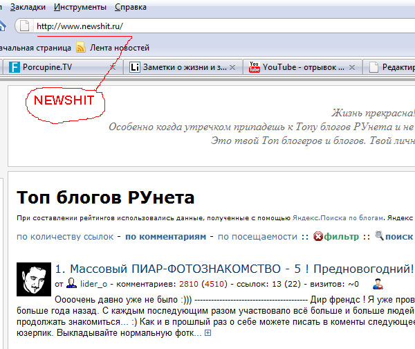 newshit.ru - новый топ блогосферы