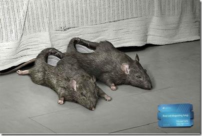 тапочки крысы у кровати