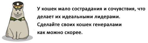pdpododqq_007 (500x147, 18Kb)