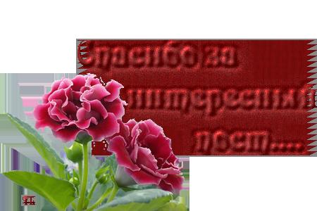 51570949_47881417_40983352_Untitled153 (450x300, 192Kb)