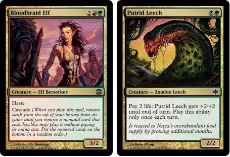 Bloodraid elf putrid leech