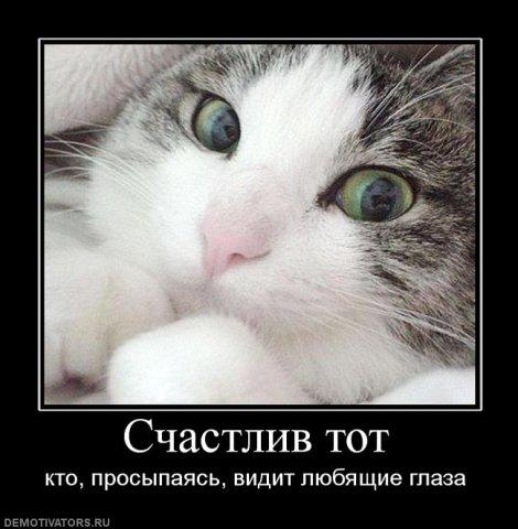 Демотиваторы про любовь - Страница 3 52619608_x_7a811914