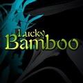 Lucky Bamboo Photoshop Brushes