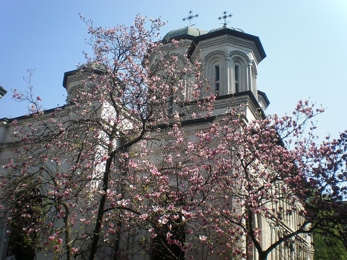 монастырь «Radu Voda»-Бухарест 57533