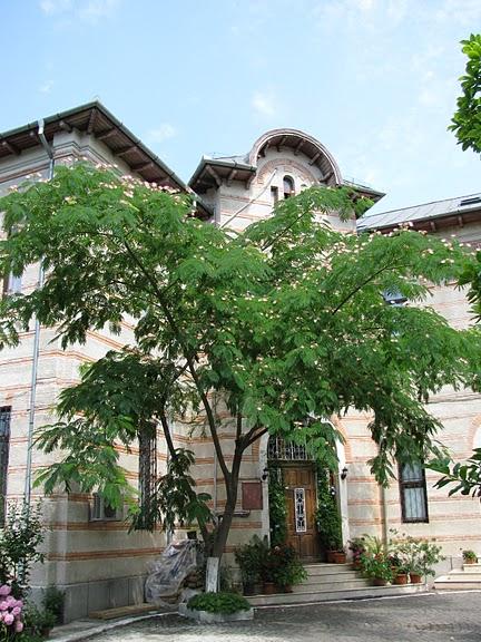 монастырь «Radu Voda»-Бухарест 55331