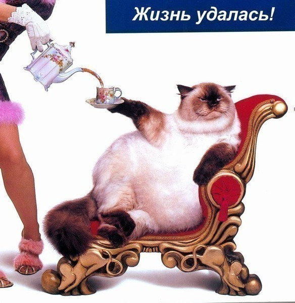 http://img0.liveinternet.ru/images/attach/c/0//63/301/63301412__1_31.JPG