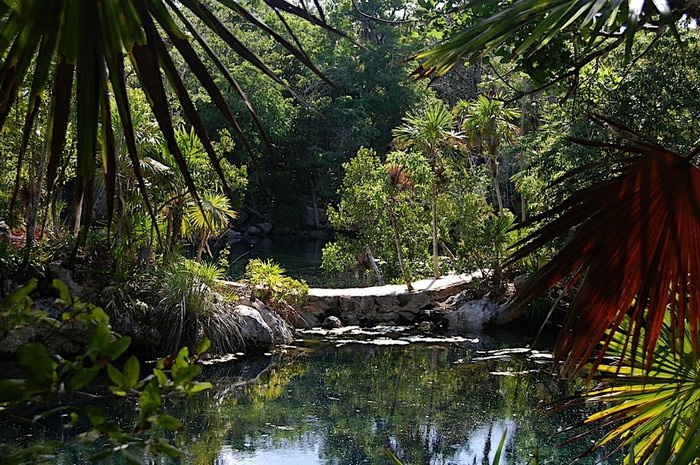 Парк Xel-Ha в Мексике 97611