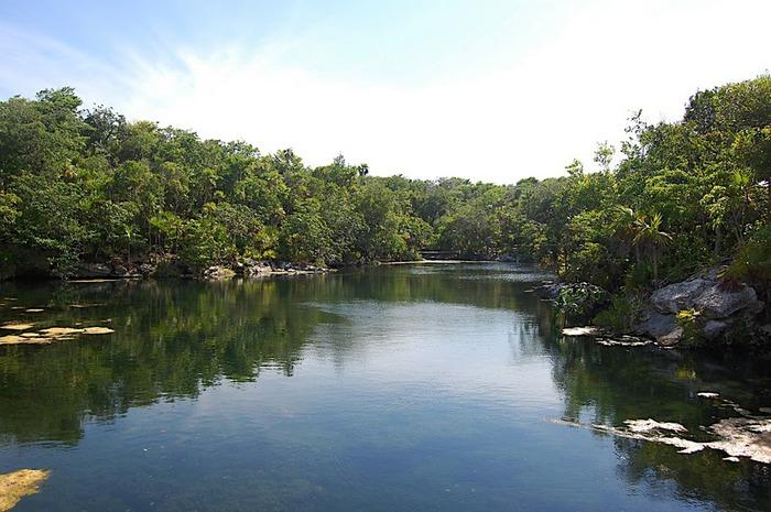 Парк Xel-Ha в Мексике 48964
