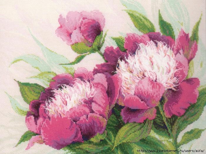 Вышивка крестом, схемы Розовые