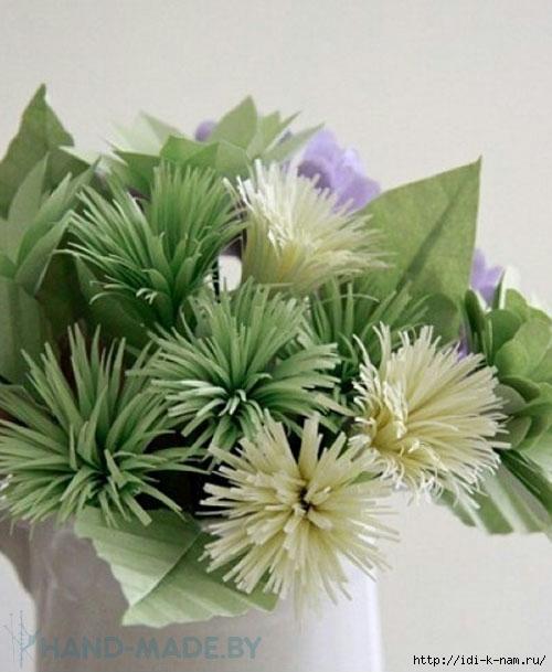 цветок - хризантема.