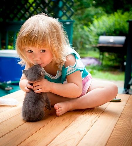 дети и котята1 (450x500, 175Kb)