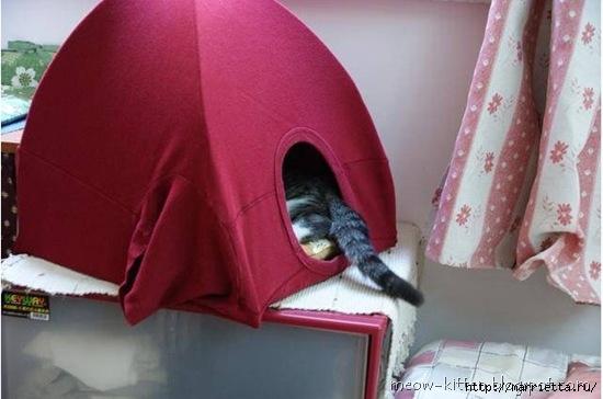 домик для кошки из вешалок и футболки (8) (550x364, 108Kb)