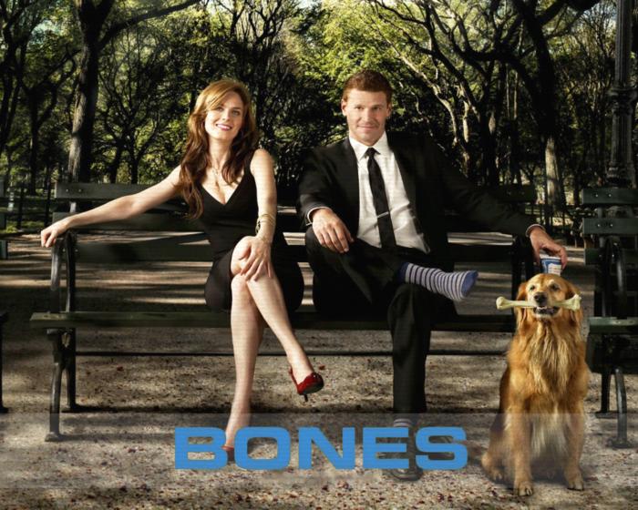 5651128_bones_2005_541_wallpaper (700x560, 782Kb)