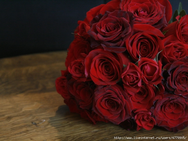 Holidays___International_Womens_Day_Red_roses_on_March_8_on_a_dark_background_060669_29 (640x480, 195Kb)