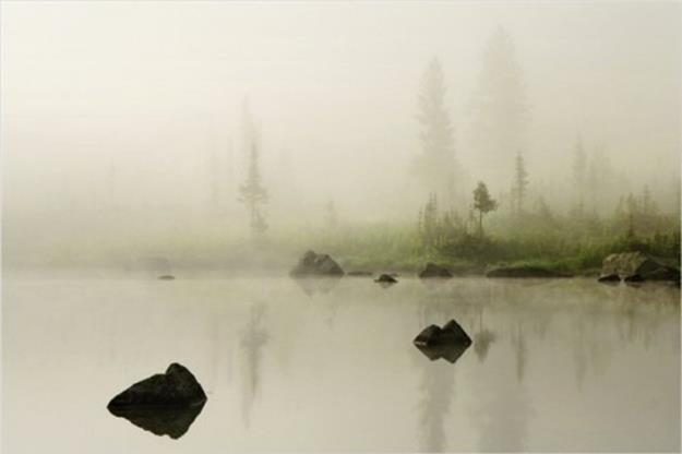 Природа Красноярского края