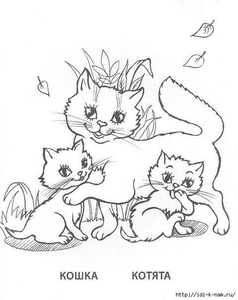 Раскраски домашние животные и их детеныши для детей