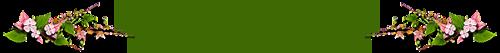 0_87836_fd9c96e9_L (500x53, 32Kb)