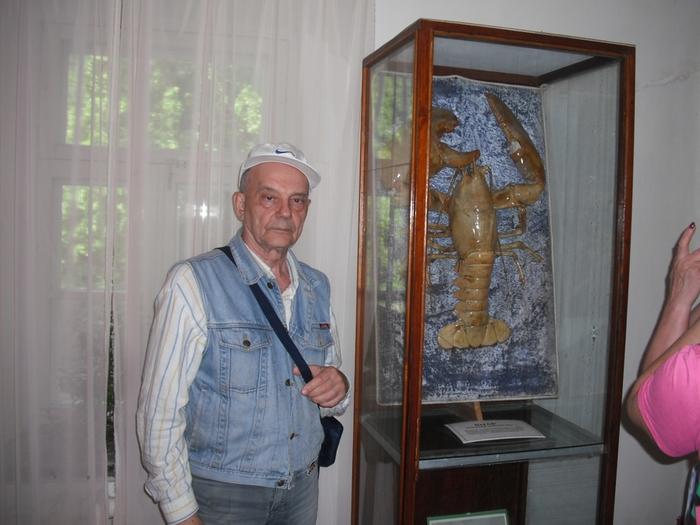 Музей подарков путина 157