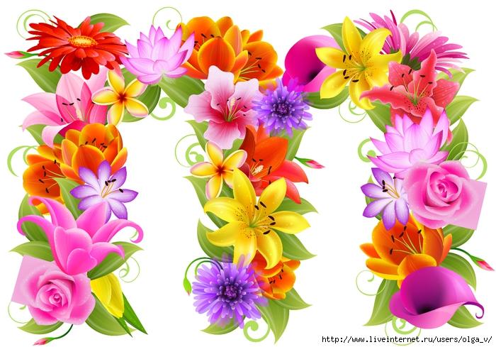 Все цветы на букву о картинки