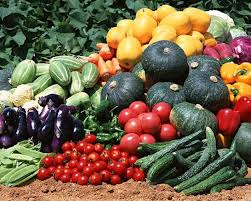 когда чем и как подкармливать растения на даче овощи фрукты плодовые деревья цветы, подкормка растений, /4682845_ (251x201, 16Kb)