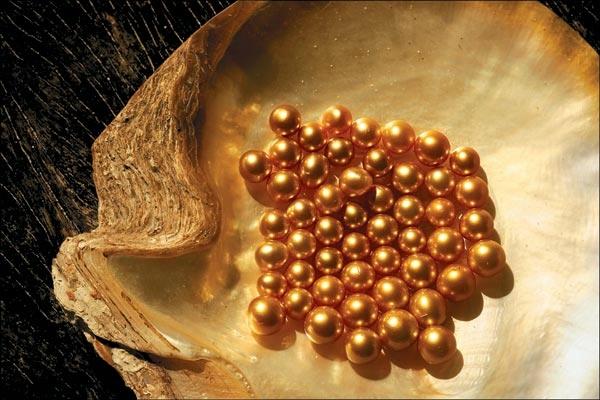 золотой жемчуг фото 1 (600x400, 148Kb)