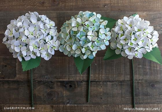 Hydrengea_Blooms_DIY (560x387, 206Kb)