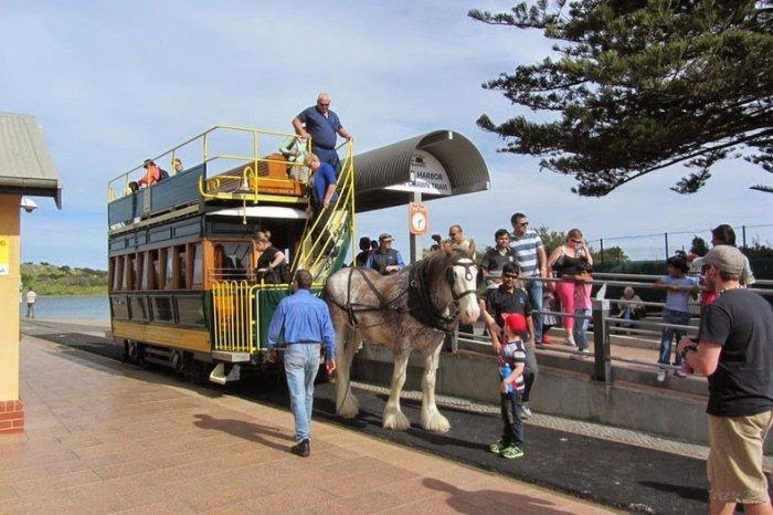 австралийский конный трамвай 2 (700x466, 284Kb)