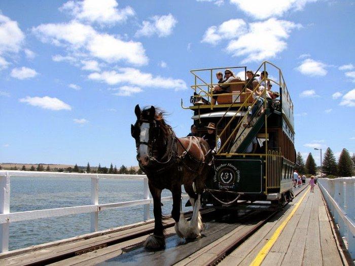 австралийский конный трамвай 7 (700x524, 304Kb)