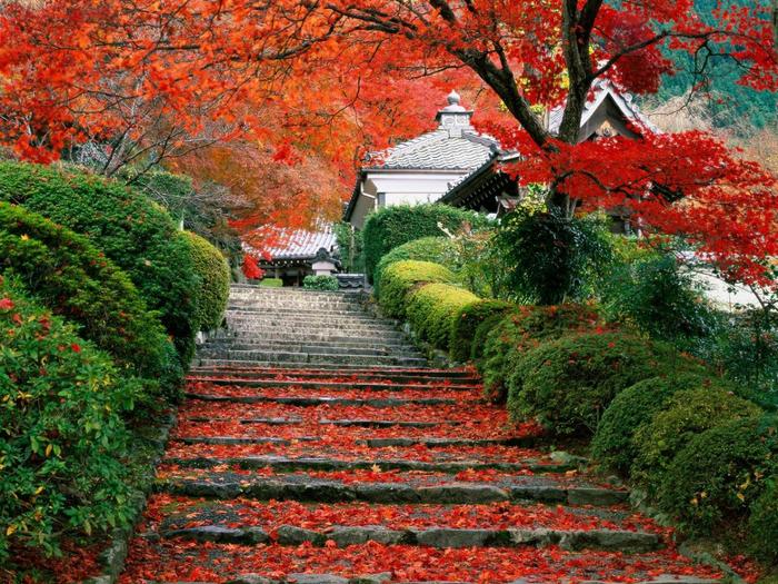 Загадки Японии и ее культуры (3) (700x525, 637Kb)