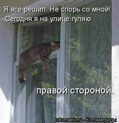 kotomatritsa_lj (400x412, 77Kb)